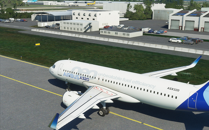FlightSimulator 2020-08-21-08